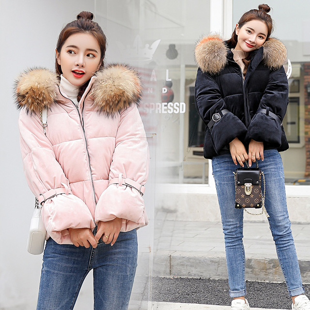 Gold velvet fabric Raccoon Fur hat short paragraph Winter women's down jacket new fashion trendy windproof warm cotton coat