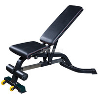 High Quality Professional Adjustable Dumbbell Sit Up Fitness Bench