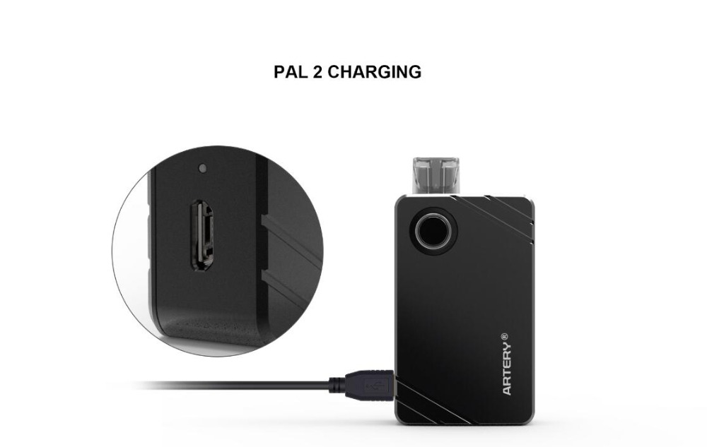 Artery PAL II 1000mAh Kit-8