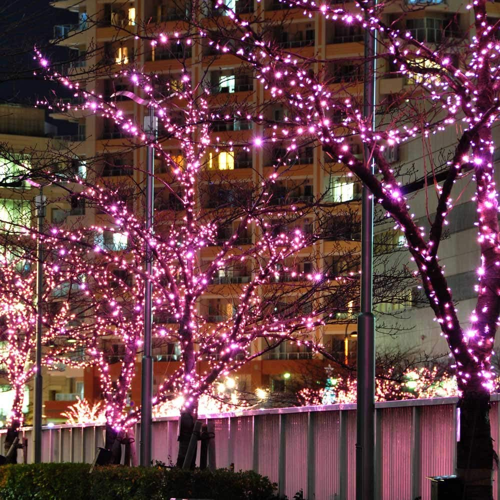 100 LED Solar String Light Outdoor Waterproof Fairy Solar Lights For Garden Decoration Christmas Solar Powered Lamp Strip 200LED (26)