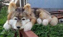 simulation animal 38x24x14cm prone wolfhound toy model lifelike dog toy home decoration gift w001