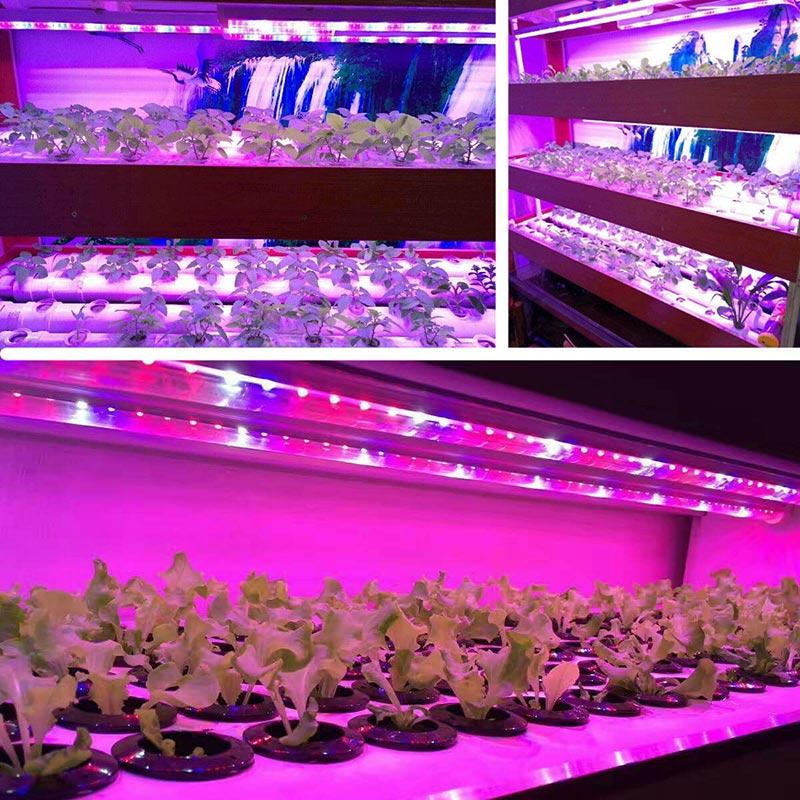 Aliexpress Com Buy 30cm Spectrum Led Grow Light Indoor
