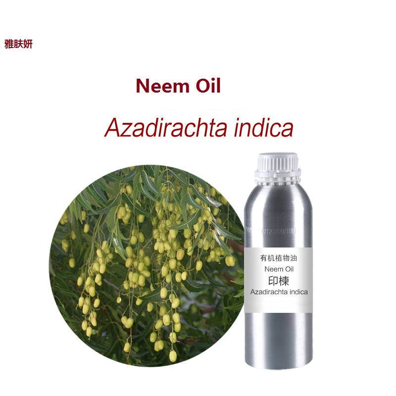 Cosmetics massage oil 100g/bottle Neem essential oil organic cold pressed   skin care oil free shipping cold pressed murder