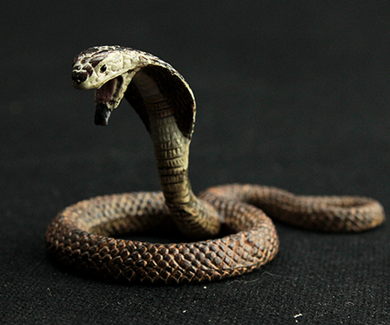 Cartoon Figures Cobra Rattlesnake Model Educational-Toys Kids Mini Animals Pythons Gift