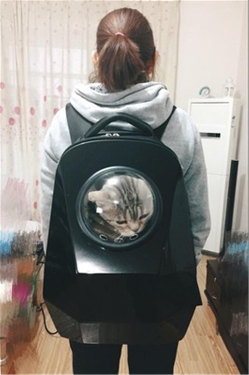 pet bag backpack11