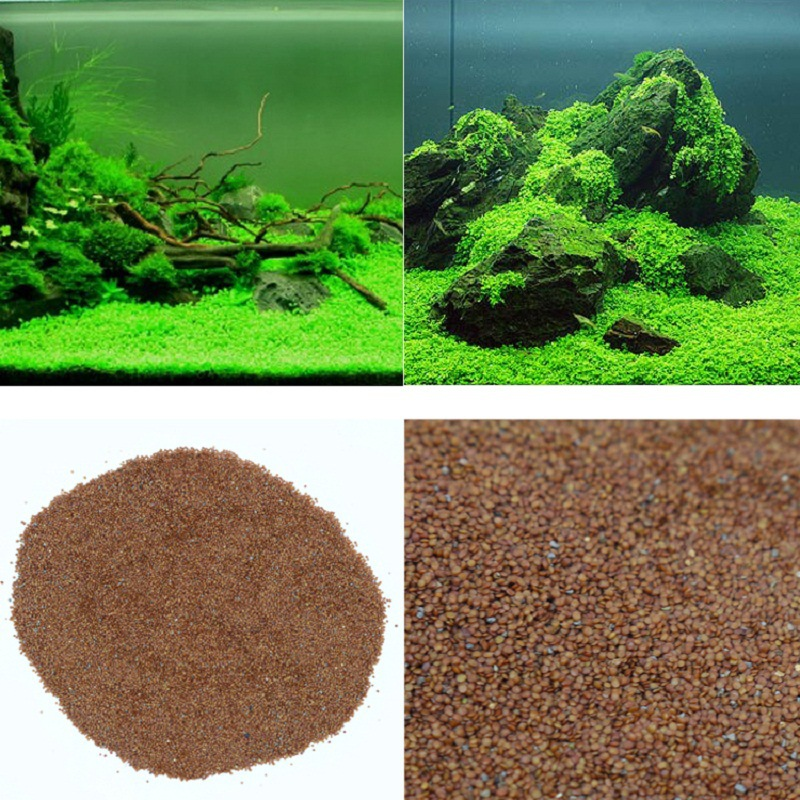 10g / Bag Aquarium Aquatic Water Grass Seeds Live Plant Hemianthus Callitrichoides Seed Fish Tank Decoration Landscape Ornament
