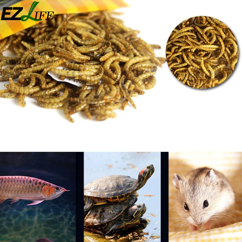 Turtle Food Feed Sticks Granules Dried Fish Shrimp Bread Worms Reptile Aquarium Terrapin Tortoise Food PXP1999