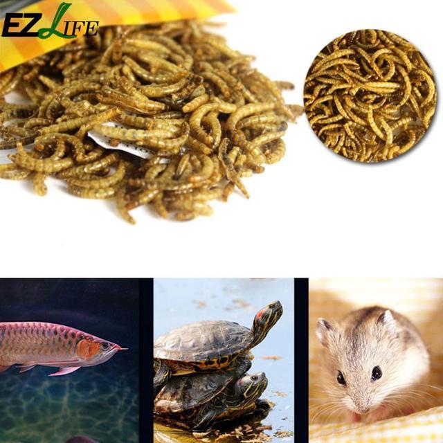 Turtle Food Feed Sticks Granules Dried Fish Shrimp Bread Worms Reptile Aquarium Terrapin Tortoise Food PXP1999