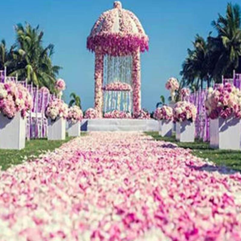 New Arrival 2018 Cheap Silk Rose Flower Petals 5000 Pcs/lots Wedding Accessories Marriage Wedding Rose Petals Romantic Flower