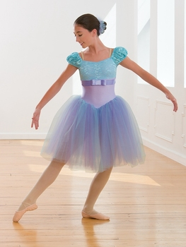 2018 New Lady Ballet Dance Dress Girls BalletTutu Costume Women Stage Proformance Competition Suit Dress B-2402