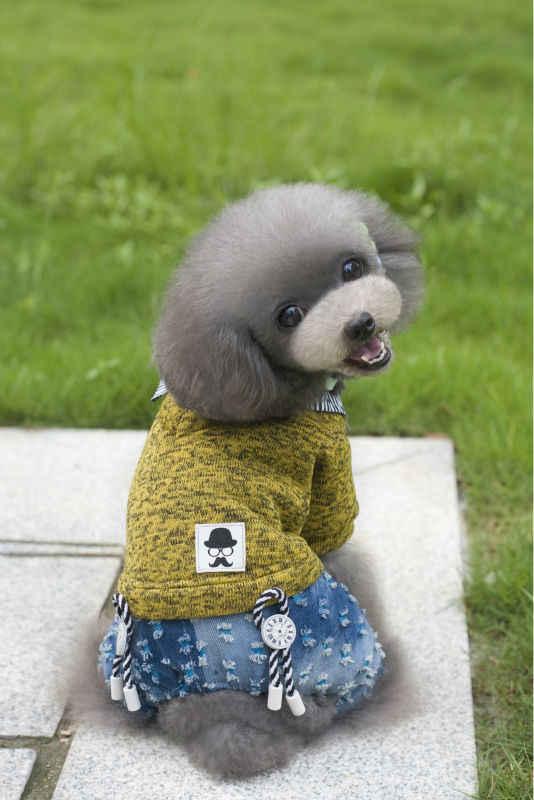 Y117 Сезон Зима 2016 из флиса для собак свитер забавной одежды с принтом «супер теплый флис 4 штаны для комбинезон для щенков собак комбинезон