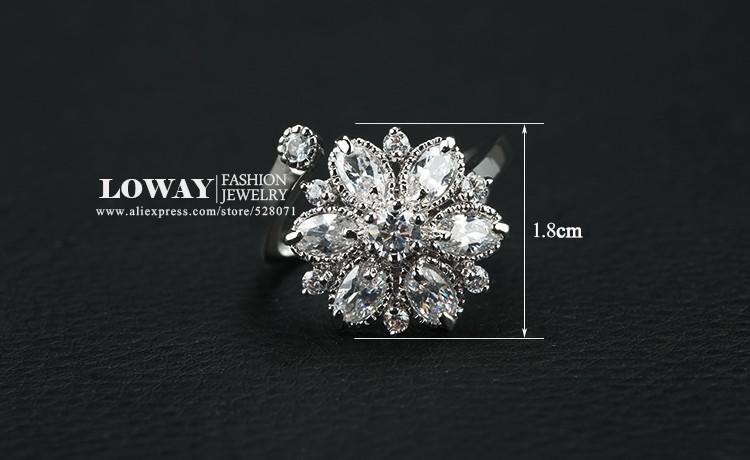 rings (1)