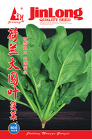 20g/Pack Big  Round Leaf Spinach Seed Four Seasons Sowing Easy To Grow Vegetable seeds balcony bonsai spinach seed,free shipping