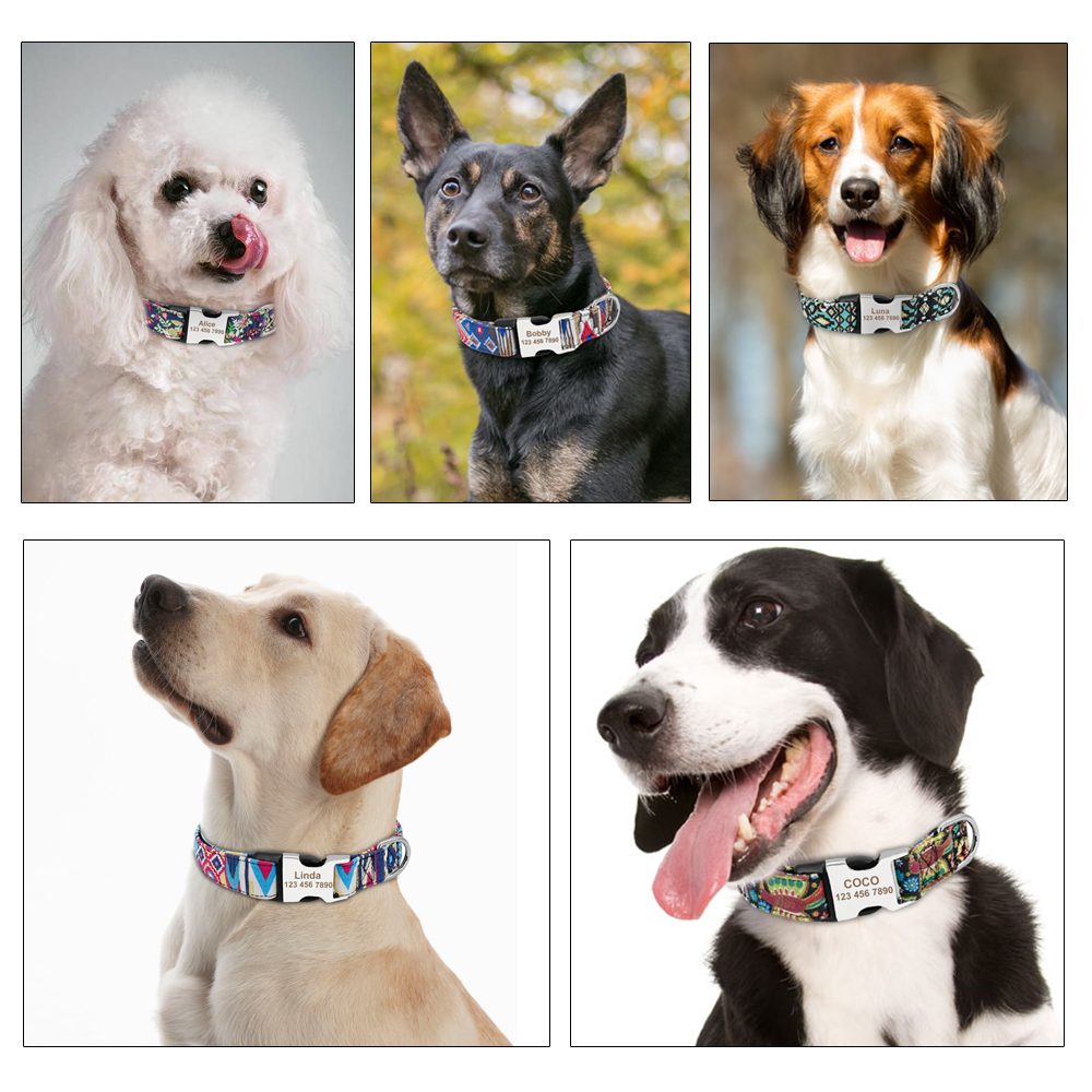 Image 5 - Custom Dog Collar Personalized Nylon Pet Dog Tag Collar Adjustable Engraved Puppy Cat Nameplate ID Collars For Small Large Dogs-in Collars from Home & Garden