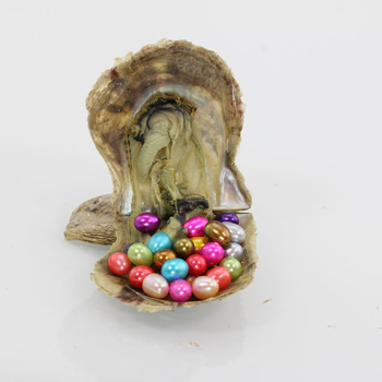 vibrant pearls 2018 Wholesale 28 color 6-7MM Rice Pearl Oyster saltwater Natural Cultured love wish pearl oyster for party AO011