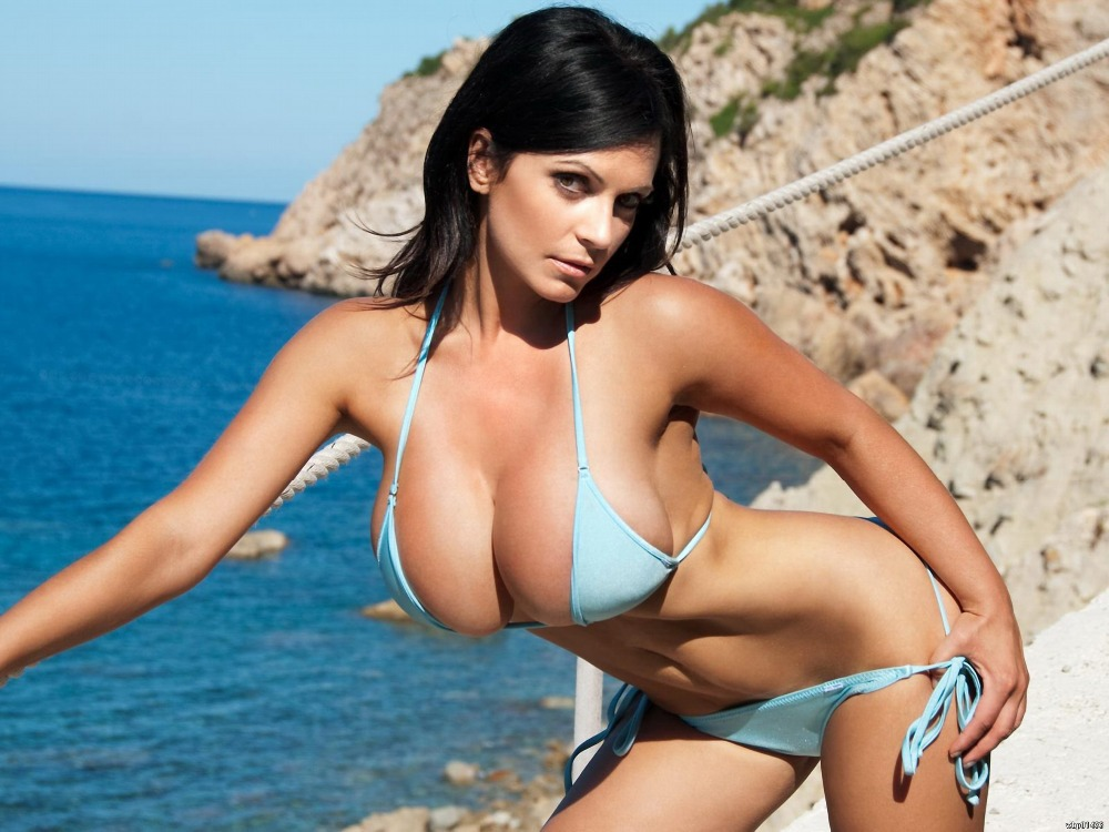 Denise Milani Hot Sexy Bikini Big Boobs Art Huge Print -2985