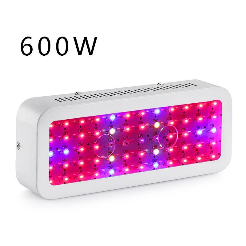 Expédition rapide 600 w LED Grognant Lampes Plein Spectre Phyto Lampe Adapté Pour Toute Boîte Grandir Élèvent La Lumière en Russe entrepôt Vendeur