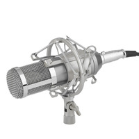Professional Condenser Sound Recording Microphone With Mount Holder For Karaoke Radio Braodcasting Singing High Quality And