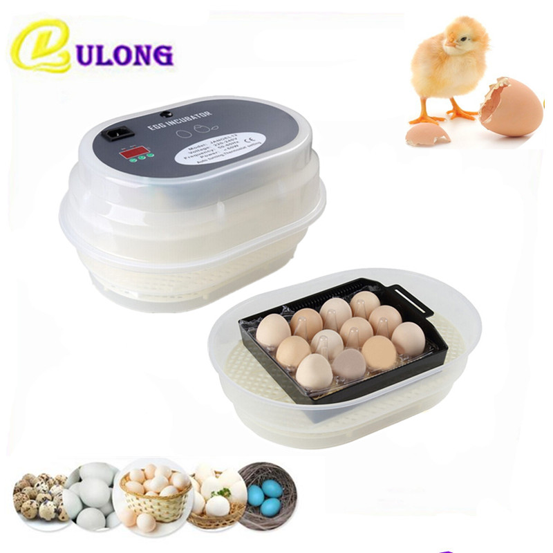 Household Mini Digital Incubator Full Automatic Egg Turning 12 Egg Hatcher Brooder Poultry Hatching Equipment ce certificate poultry hatchery machines automatic egg turning 220v hatching incubators for sale