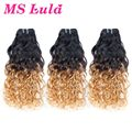 New Arrival Free Shipping 3pcs lot water wave virgin hair Ombre brazilian hair ombre human hair Mslula Hair