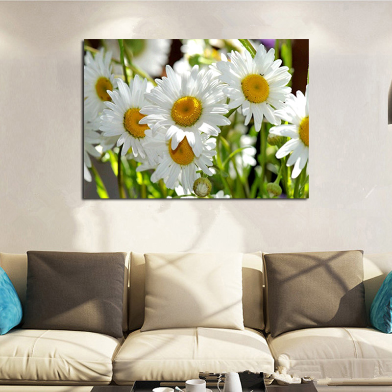 Square Full Drill 5D Diamond Painting DIY Embroidery White Daisies Home Decor image