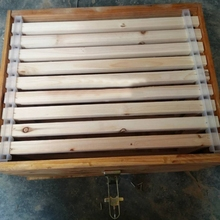 5pcs Beekeeping Bar Bee Hive Frame Avoid Agitation Plastic White Interval 37cm anti shaking for beehive frame