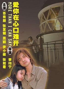 《乌龙小子流浪记》2004年台湾剧情,爱情电影在线观看