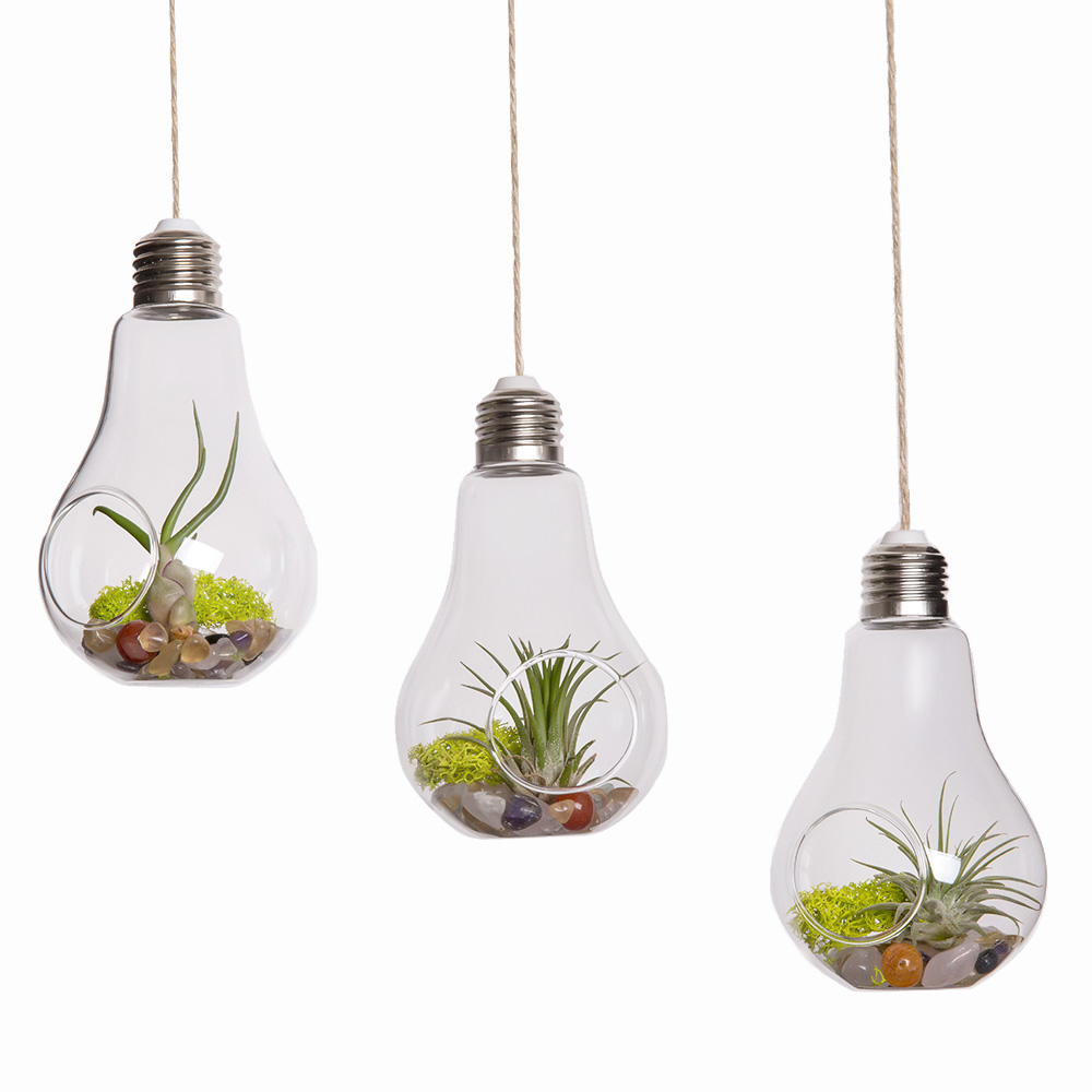 Compare Prices On Glass Hanging Planters Online Shopping