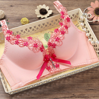 3 4 Cup Large Size Push Up Bra Summer Style Lace Sexy Underwear For Women Bra