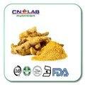 Puro extracto de raíz de cúrcuma 95% 500g jengibre cúrcuma en polvo para productos de cuidado de la salud