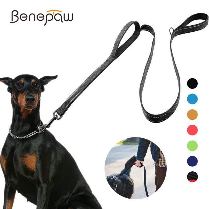 Laisse de chien rembourrée réfléchissante Benepaw deux poignée Durable petit moyen grand chien laisse de formation pour animaux de compagnie plomb en Nylon 7 couleurs