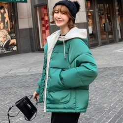 new Hooded Collar Female Coat Winter Womens Outwear Winter Jackets Autumn Cotton Padded Chaqueta Mujer Invierno 6