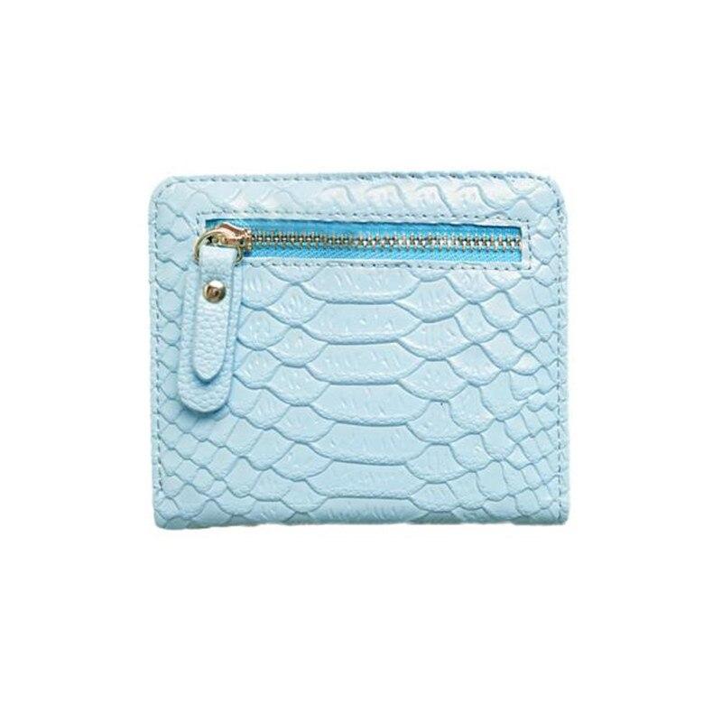 carteira pequena bolsa bolsa bolsa 2. : Wallet Women, carteira Feminina, carteras Mujer