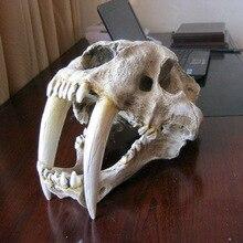 Американские Древние животные 1:1 высокого качества саблезубый ободок с ушками кошки, Тигра Череп саберзуб смайлик Fatalis Модель
