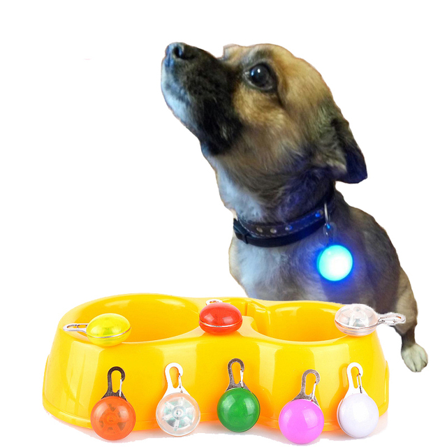 Pet Night Safety LED Flashlight,Push Button Switch Glow In