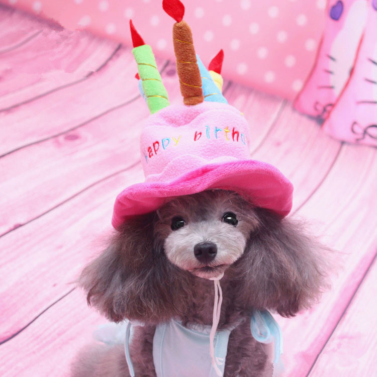 2016 New Lovely Cute Small Dog Puppy Cap Fashion Birthday Hat Pet Accessories Decoration Wig Funny Costumes Festival Perro Chien In Caps From Home
