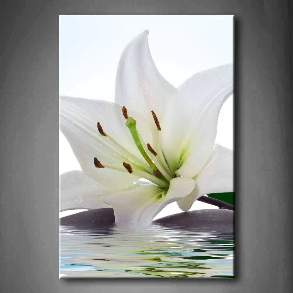 Framed Wall Art Pictures Lily Stone Water Canvas Print Artwork Flower Modern Posters With Wooden Frames For Living Room