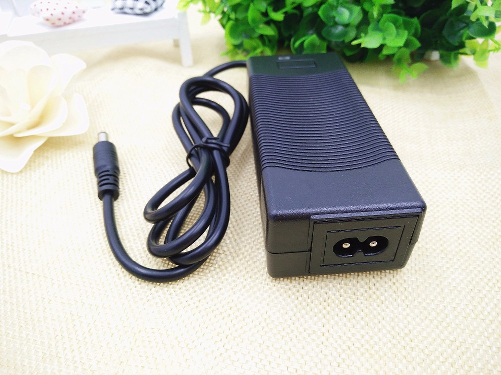 12V 3A Battery Charger (5)
