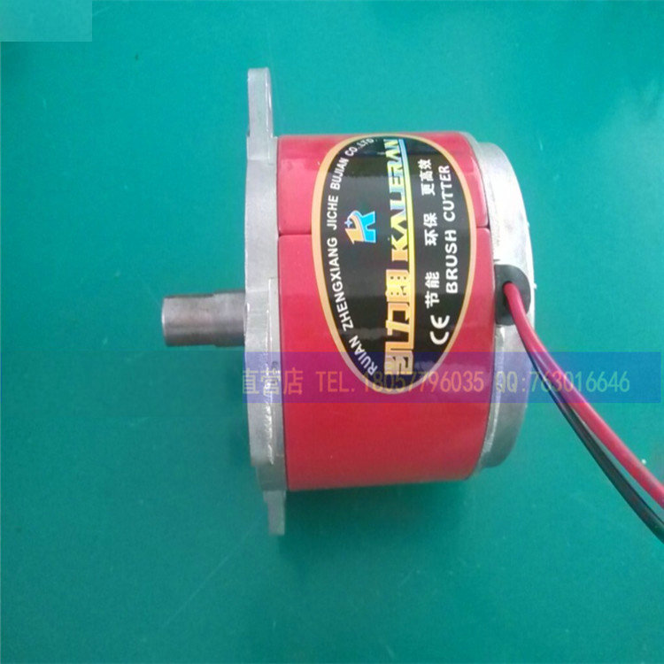 DC 24V500W 48V800W 6000-7000RPM 1.25 / N.M DC electric lawn mower motor charging grinder DC motor with fan blades 1pcs superior quality dc motor brush dc motors 775 8016 12v lawn mower motor
