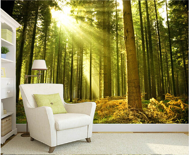 Custom nature wall murals, the sun through the forest wall ...