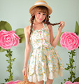 Princess sweet lolita dress Candy rain new summer floral sleeveless Pure and fresh vest dress C15AB5708