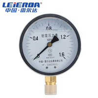 LEIERDA Vibration proof pressure gauge Aseismic oil filling pressure gauge shock proof oil filled pressure gauge YN 100