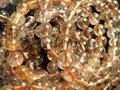 Fazer jóia (44 contas/lot/40g) incrível Brasil 8.8-9.3mm de cobre rutilado naturais pedra de quartzo suave rodada beads europeus