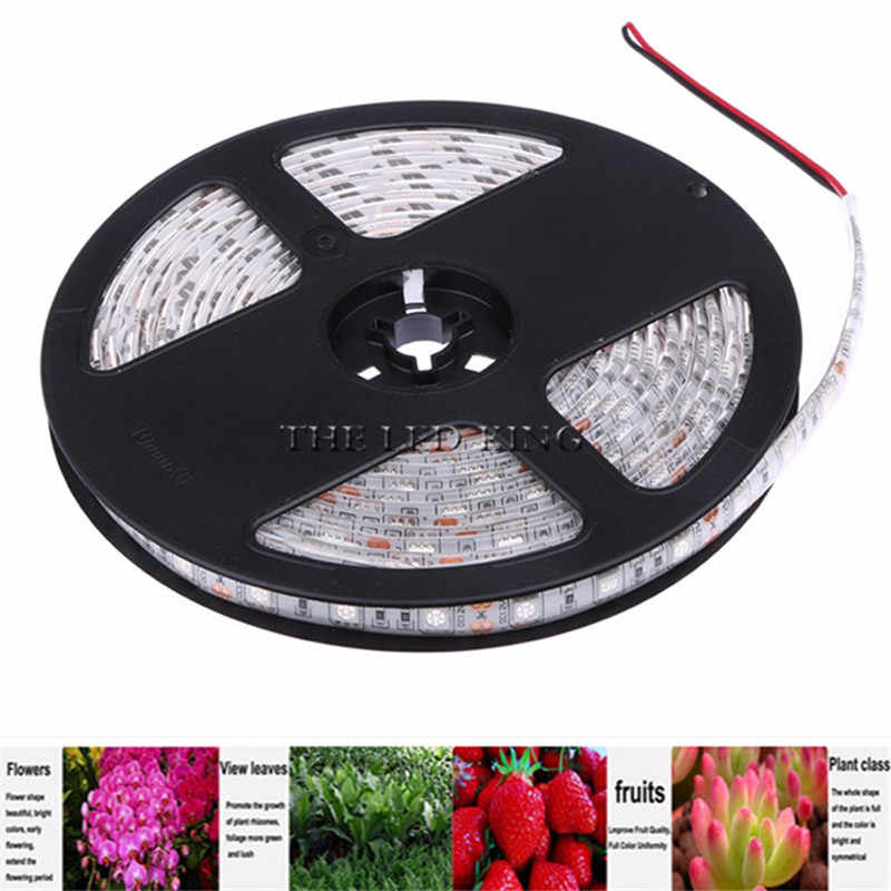 LED تنمو أضواء DC12V تزايد LED قطاع نمو النبات ضوء مجموعة مع الاتحاد الأوروبي محول والتبديل ، SMD5050 مرنة الأحمر الأزرق 4:1 ، 5:1 ، 3:1