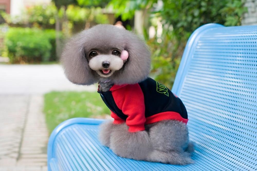 S / M / L / XL / 2XL / 3XL / 4XL / 5XL Goedkope merk superman kleding - Producten voor huisdieren - Foto 2
