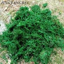 Doğal 50g 100g çanta kuru gerçek yeşil yosun dekoratif bitkiler vazo suni çim ipek çiçek aksesuarları saksı dekorasyon
