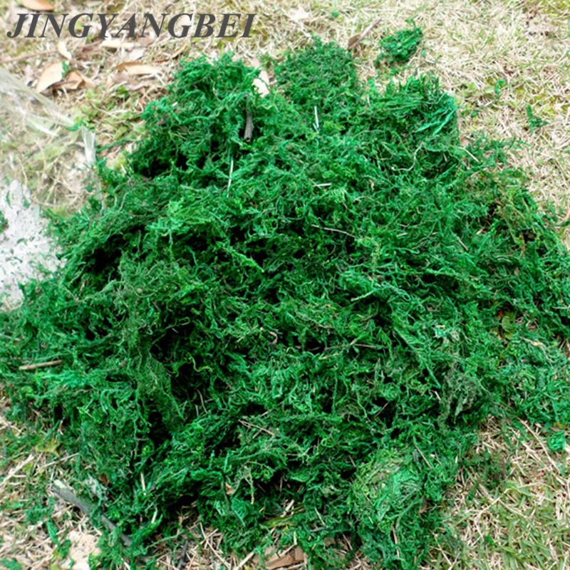 Natural 50g 100g bag dry real green moss decorative plants vase artificial turf silk Flower accessories for flowerpot decoration-in Artificial & Dried Flowers from Home & Garden