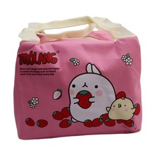 Cute Cartoon Lunch Bag Box Insulation Bag Portable Casual Tote Zipper Thermal Food Picnic Lunch Bags For Family Kids Children(China)
