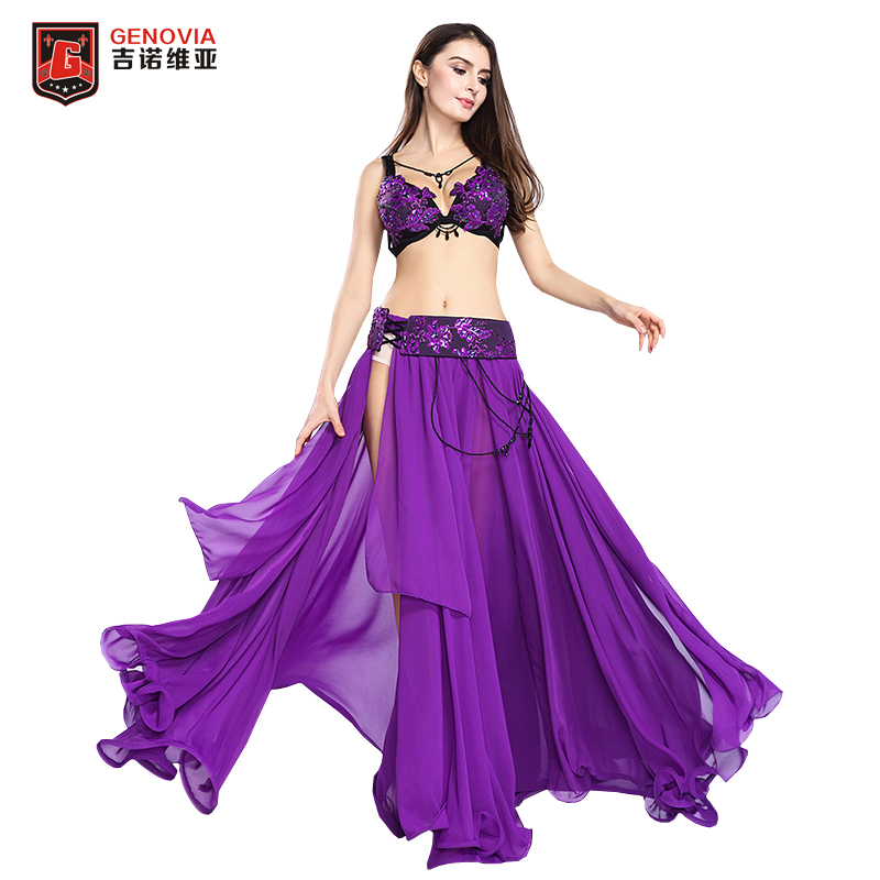 2018 New Arrival Belly Dance outfits Long Skirt Set Professional Women Elegant Belly Dance Costumes 3