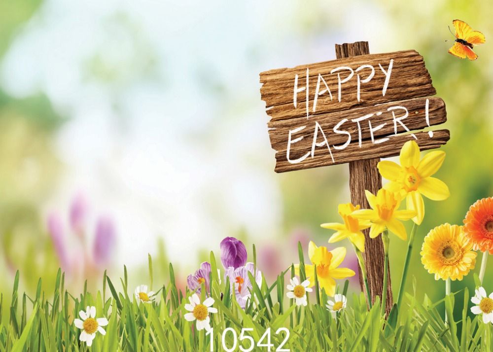 SHANNY Vinyl Custom Photography Backdrops Prop Easter day Theme Digital Photo Studio Background 10542 custom spring easter day flowers photography background for children photo studio vinyl digital printing cloth backdrops s 461